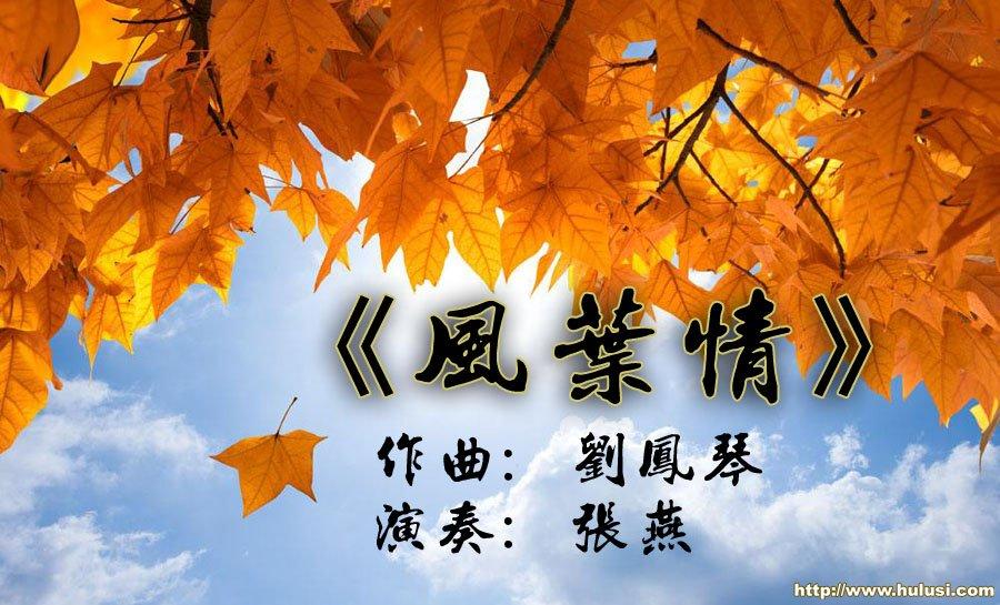《风叶情》葫芦丝音乐欣赏 刘凤琴原创