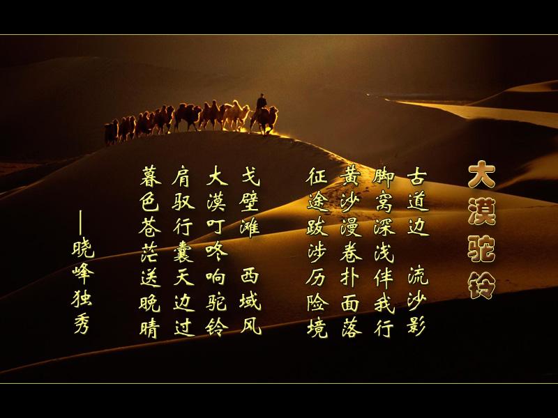 旭 大漠驼铃 葫芦丝示范,曲谱,伴奏