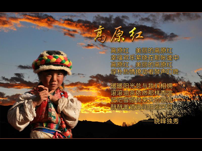 高原红 葫芦丝曲谱 示范