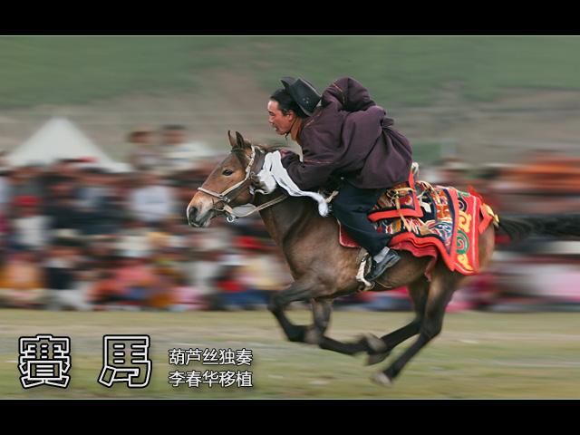 《赛马》葫芦丝曲谱 李春华版